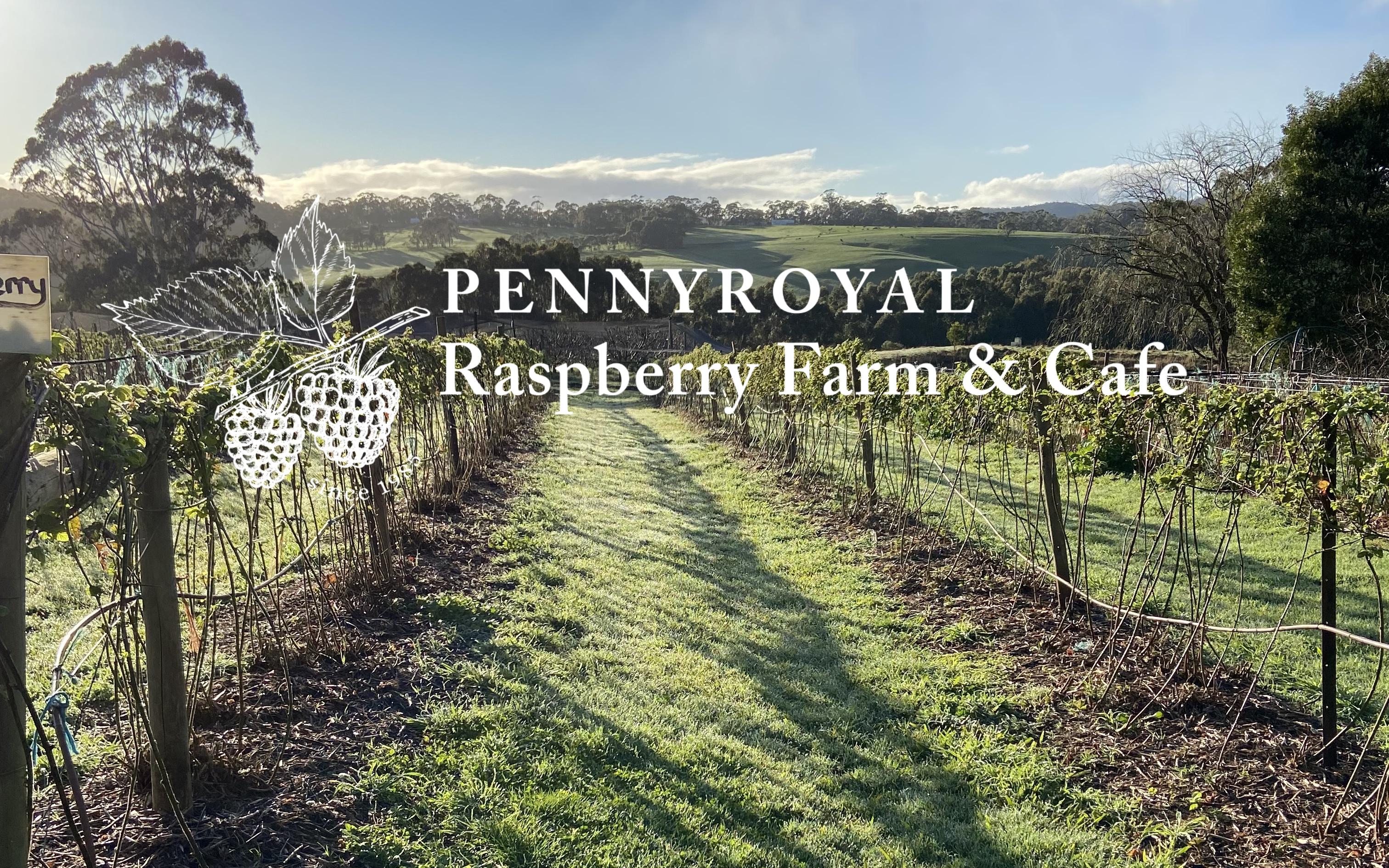 Pennyroyal Raspberry Farm